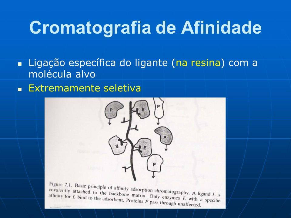 Cromatografia de Afinidade Ligação específica do ligante (na resina) com a molécula alvo Extremamente seletiva