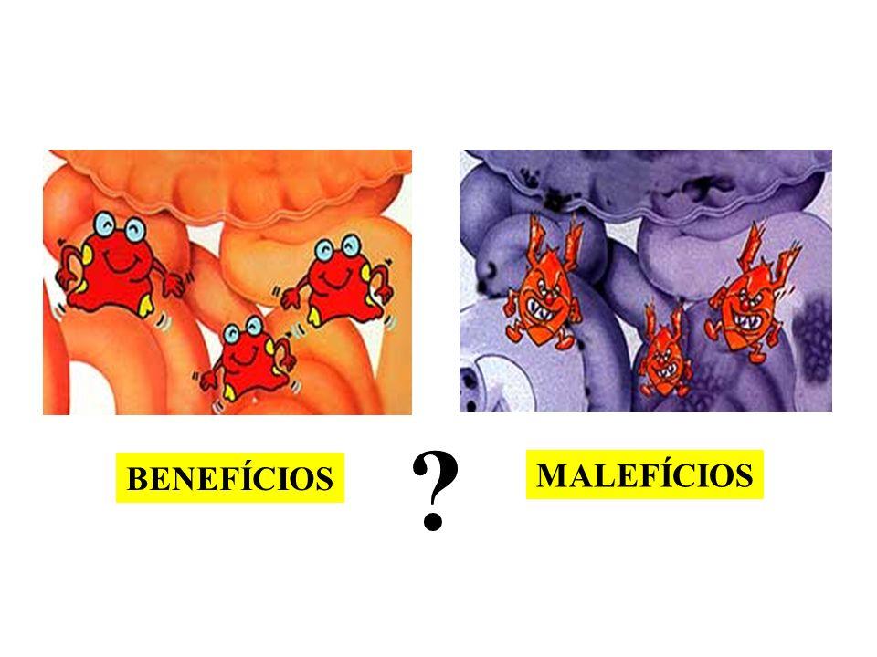 BENEFÍCIOS MALEFÍCIOS ?