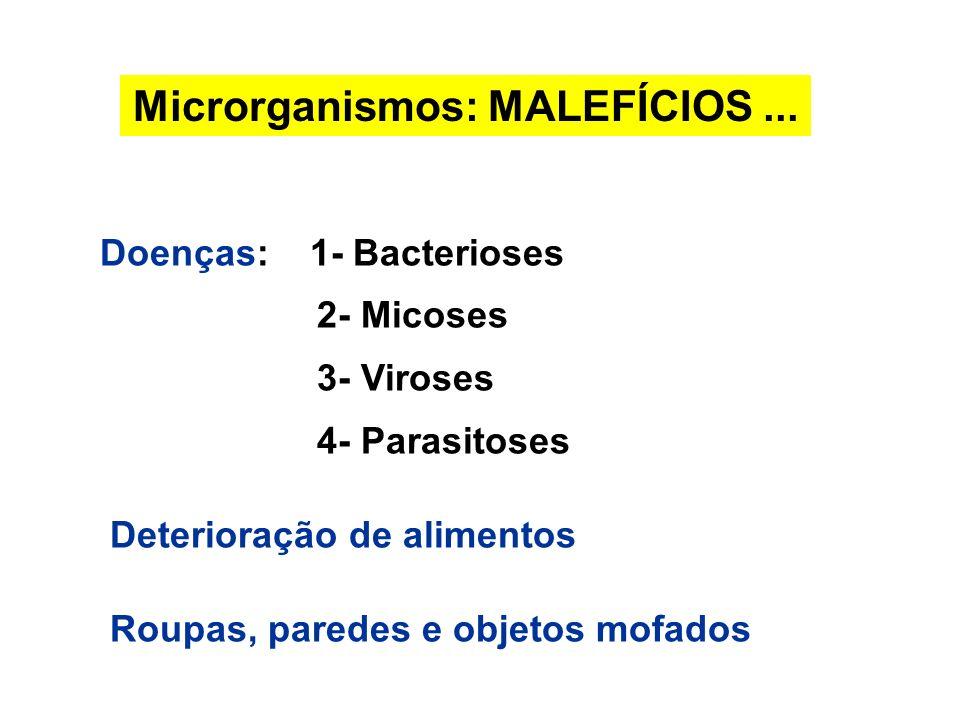 Microrganismos: MALEFÍCIOS... Doenças: 1- Bacterioses 2- Micoses 3- Viroses 4- Parasitoses Deterioração de alimentos Roupas, paredes e objetos mofados