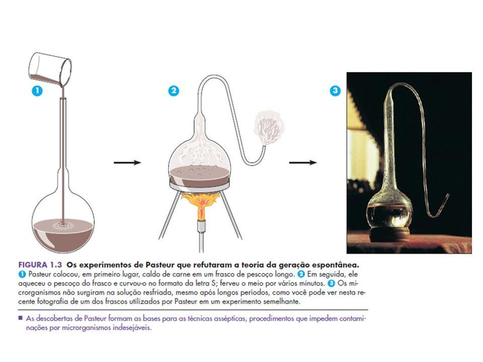 Louis Pasteur (1822-1895) Robert Koch (1843-1910) - Quebrou a teoria da geração espontânea - Teoria microbiana das doenças - Pasteurização - Vacina anti-rábica, cólera aviária e antrax - Postulados de Koch - Técnicas para obtenção de culturas puras - Técnicas de coloração - Mycobacterium tuberculosis
