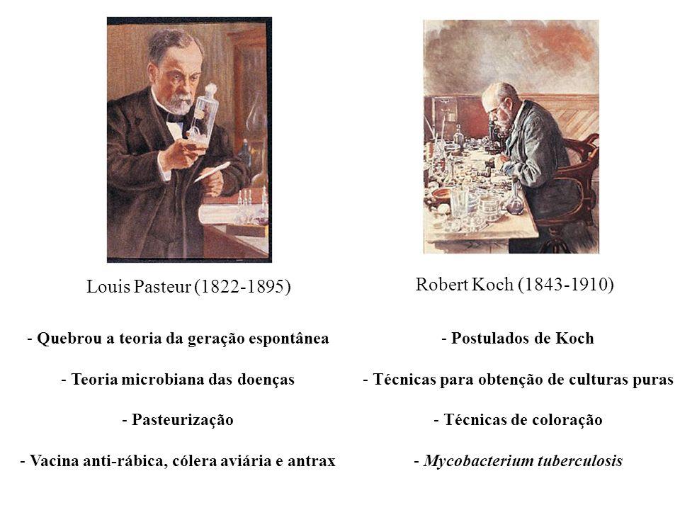 Louis Pasteur (1822-1895) Robert Koch (1843-1910) - Quebrou a teoria da geração espontânea - Teoria microbiana das doenças - Pasteurização - Vacina an