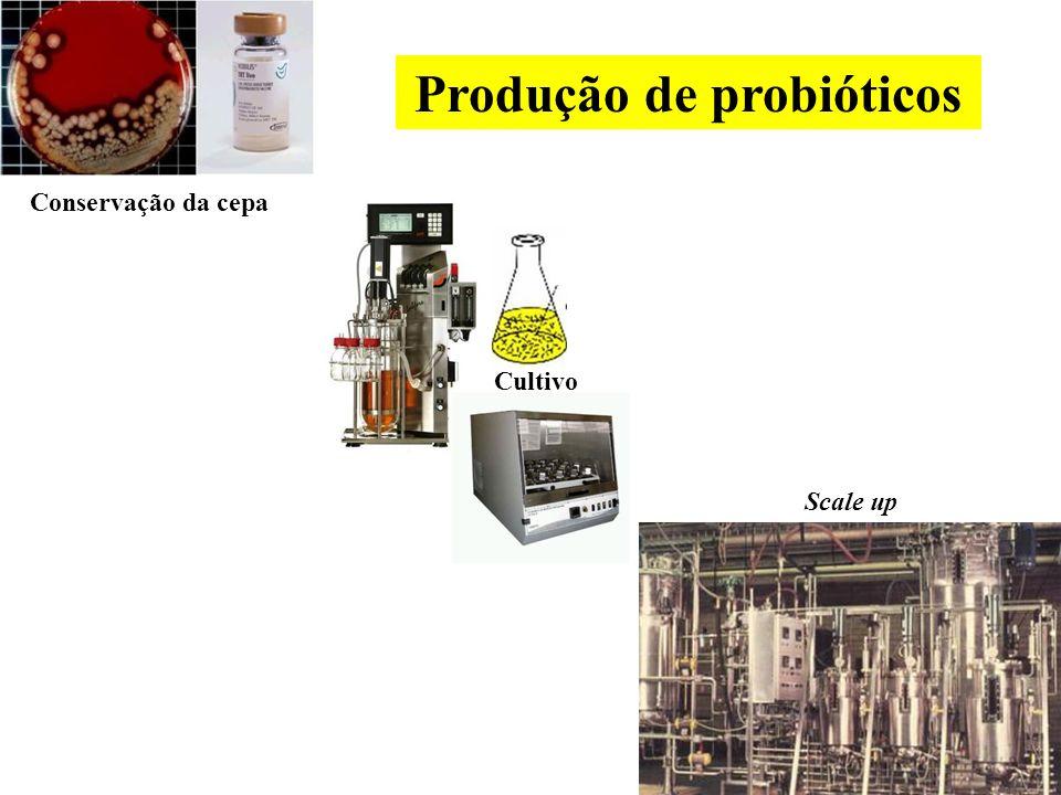 Como selecionar microrganismos probióticos.