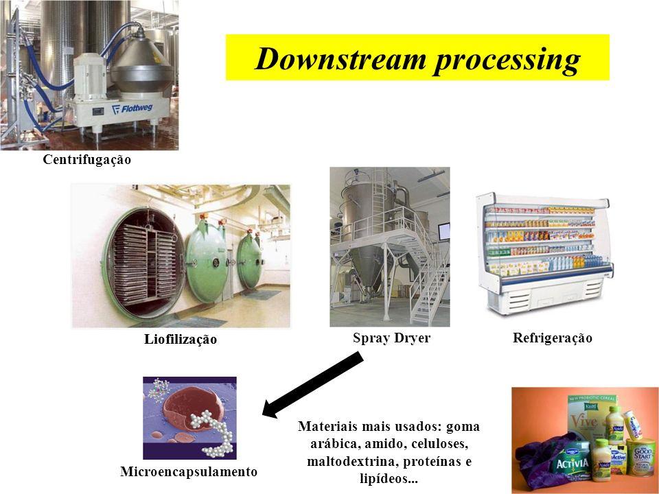 Produção de probióticos Conservação da cepa Scale up Cultivo