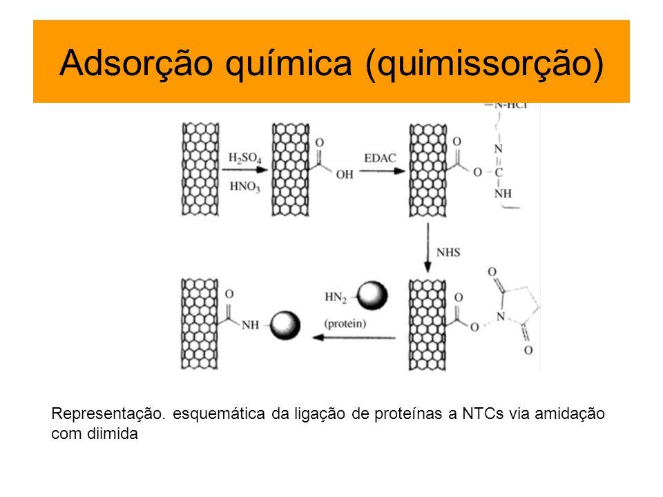 Representação. esquemática da ligação de proteínas a NTCs via amidação com diimida Adsorção química (quimissorção)