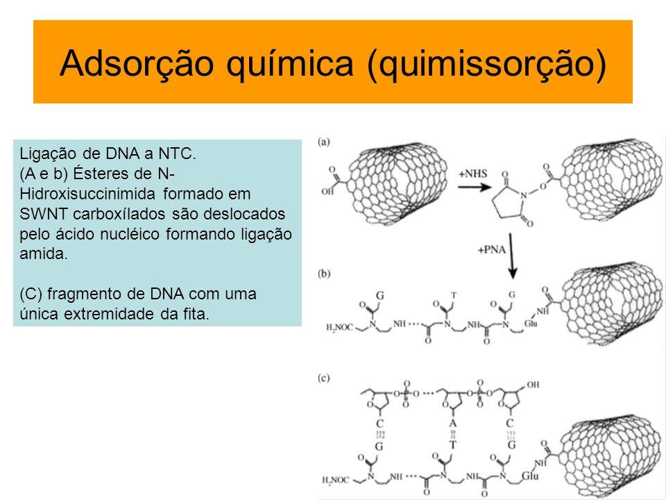 Ligação de DNA a NTC. (A e b) Ésteres de N- Hidroxisuccinimida formado em SWNT carboxílados são deslocados pelo ácido nucléico formando ligação amida.