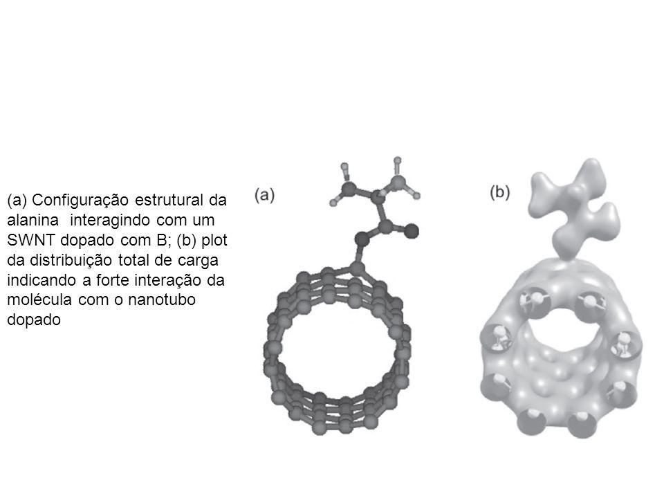 (a) Configuração estrutural da alanina interagindo com um SWNT dopado com B; (b) plot da distribuição total de carga indicando a forte interação da mo