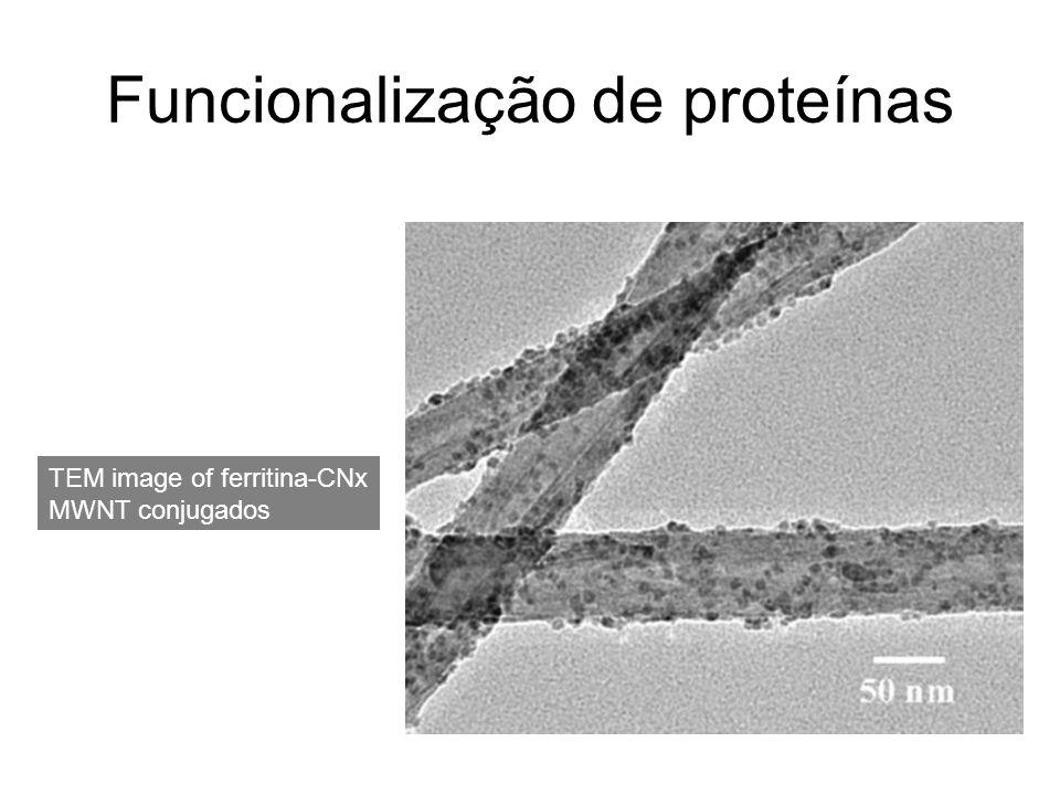 Funcionalização de proteínas TEM image of ferritina-CNx MWNT conjugados