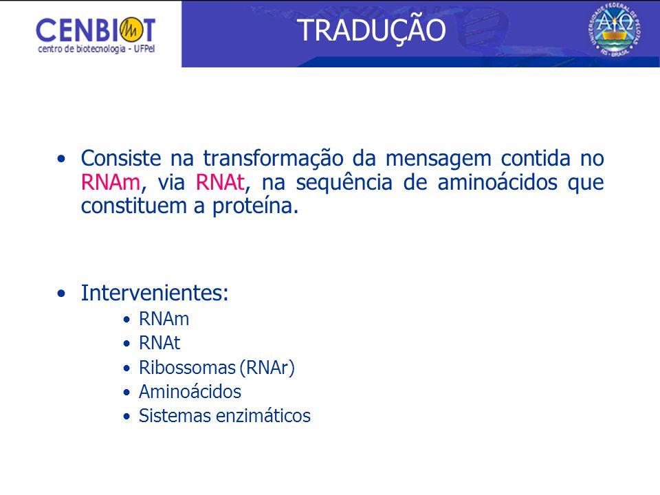 Consiste na transformação da mensagem contida no RNAm, via RNAt, na sequência de aminoácidos que constituem a proteína. Intervenientes: RNAm RNAt Ribo