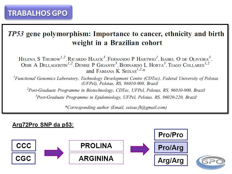 TRABALHOS GPO Arg72Pro SNP da p53: CCC PROLINA CGC ARGININA Pro/Pro Pro/Arg Arg/Arg