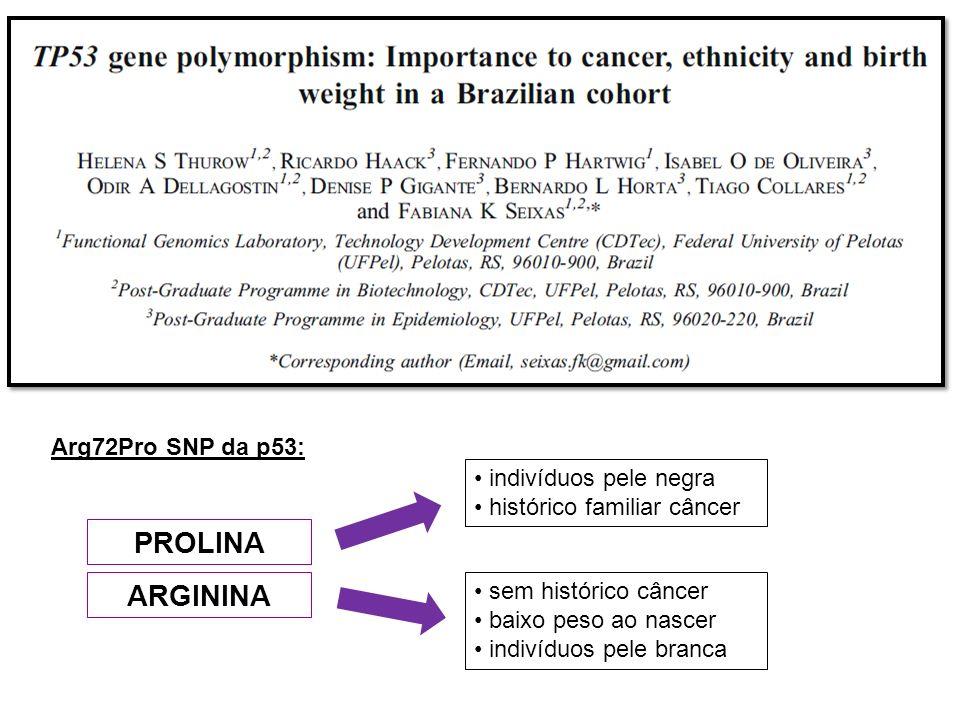 PROLINA ARGININA sem histórico câncer baixo peso ao nascer indivíduos pele branca indivíduos pele negra histórico familiar câncer Arg72Pro SNP da p53: