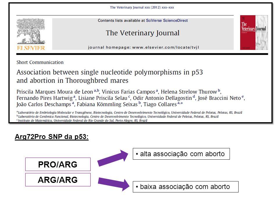 PRO/ARG ARG/ARG baixa associação com aborto alta associação com aborto Arg72Pro SNP da p53: