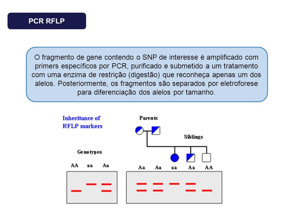 PCR RFLP O fragmento de gene contendo o SNP de interesse é amplificado com primers específicos por PCR, purificado e submetido a um tratamento com uma