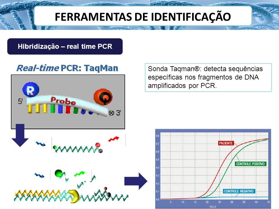 Hibridização – real time PCR Sonda Taqman®: detecta sequências específicas nos fragmentos de DNA amplificados por PCR.