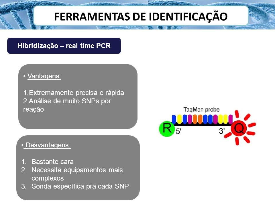 FERRAMENTAS DE IDENTIFICAÇÃO Hibridização – real time PCR Vantagens: 1.Extremamente precisa e rápida 2.Análise de muito SNPs por reação Desvantagens: