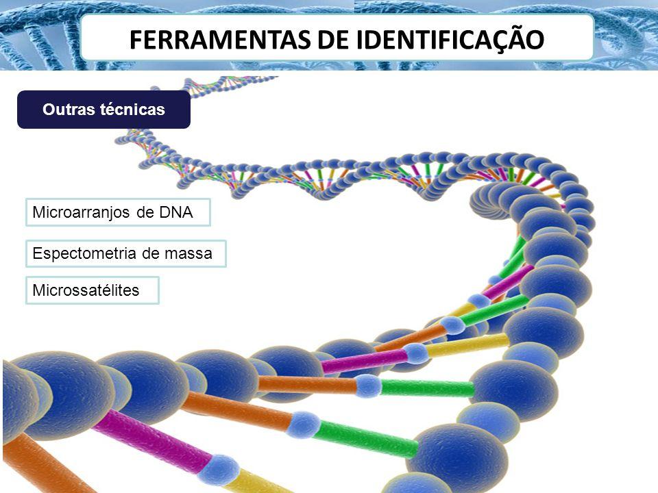 FERRAMENTAS DE IDENTIFICAÇÃO Outras técnicas Microarranjos de DNA Espectometria de massa Microssatélites