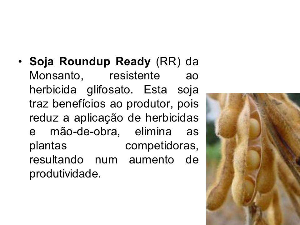 Soja Roundup Ready (RR) da Monsanto, resistente ao herbicida glifosato. Esta soja traz benefícios ao produtor, pois reduz a aplicação de herbicidas e