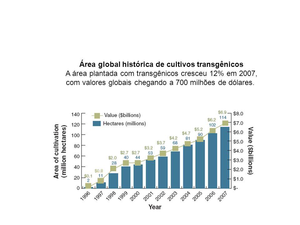 Área global histórica de cultivos transgênicos A área plantada com transgênicos cresceu 12% em 2007, com valores globais chegando a 700 milhões de dól