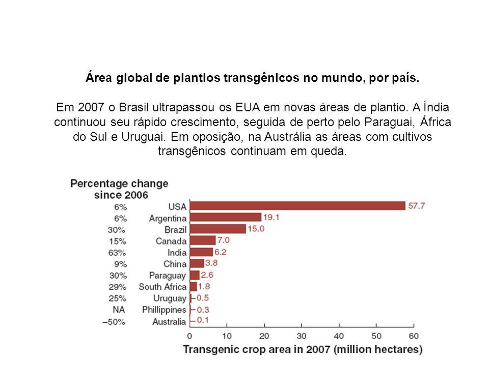 Área global de plantios transgênicos no mundo, por país. Em 2007 o Brasil ultrapassou os EUA em novas áreas de plantio. A Índia continuou seu rápido c