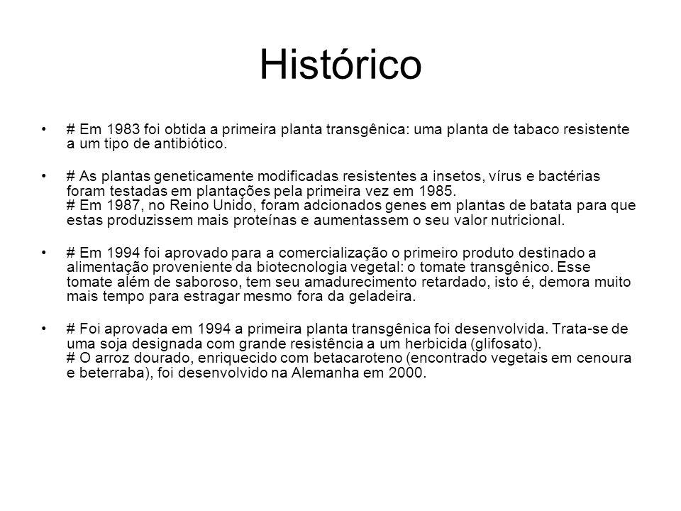 Histórico # Em 1983 foi obtida a primeira planta transgênica: uma planta de tabaco resistente a um tipo de antibiótico. # As plantas geneticamente mod