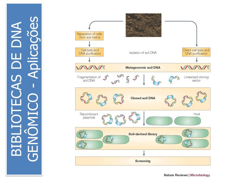 BIBLIOTECAS DE DNA GENÔMICO - Aplicações