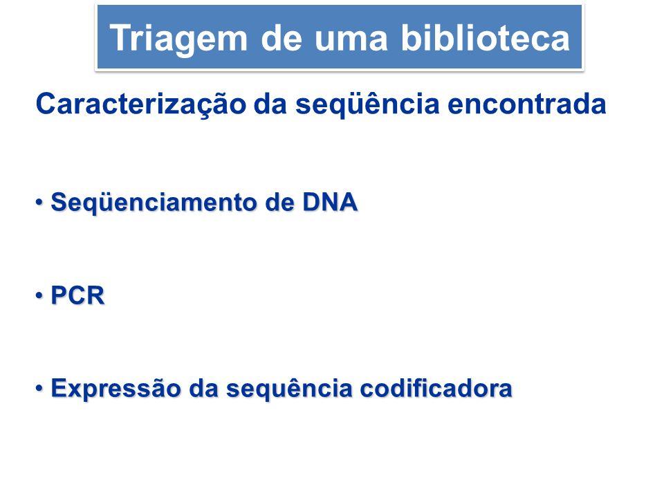 Caracterização da seqüência encontrada Seqüenciamento de DNA Seqüenciamento de DNA PCR PCR Expressão da sequência codificadora Expressão da sequência