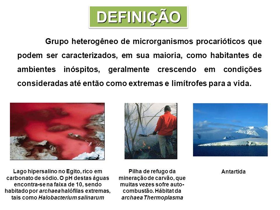 Grupo heterogêneo de microrganismos procarióticos que podem ser caracterizados, em sua maioria, como habitantes de ambientes inóspitos, geralmente cre