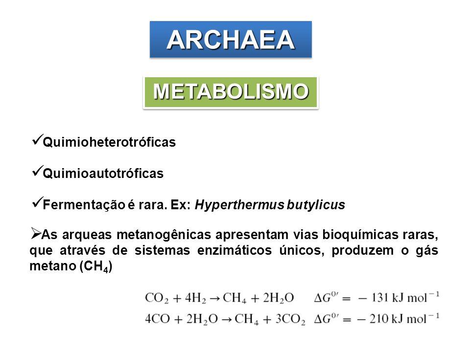ARCHAEAARCHAEA METABOLISMOMETABOLISMO Quimioheterotróficas Quimioautotróficas Fermentação é rara. Ex: Hyperthermus butylicus As arqueas metanogênicas