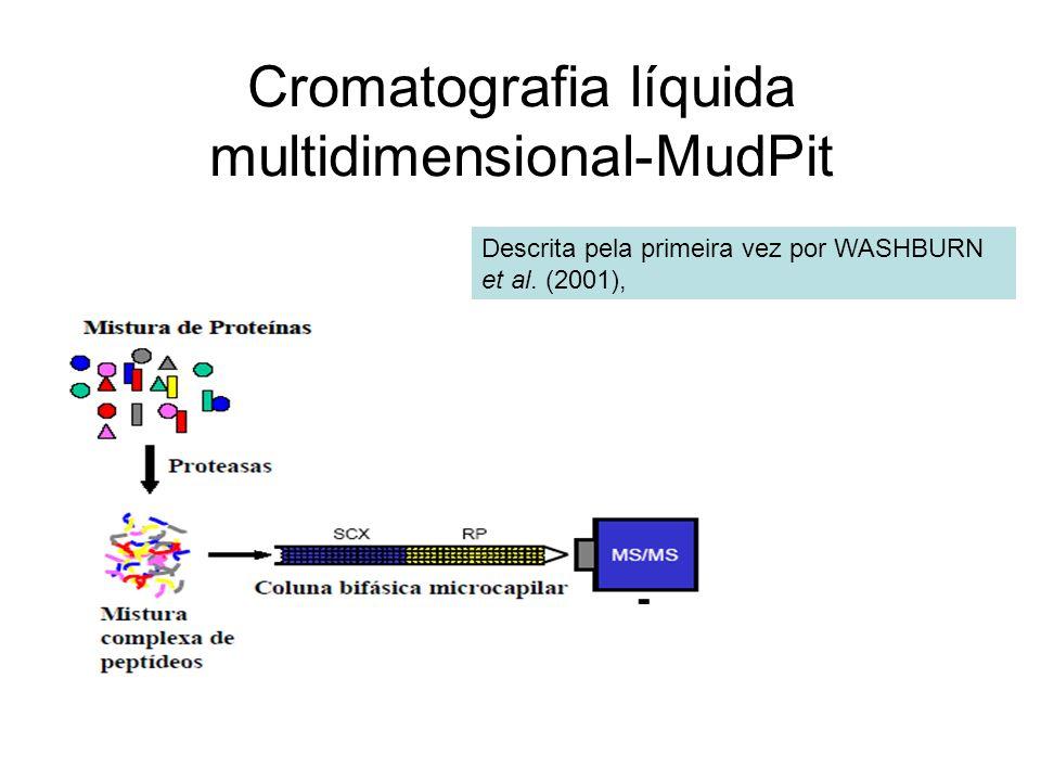 Cromatografia líquida multidimensional-MudPit Descrita pela primeira vez por WASHBURN et al. (2001),