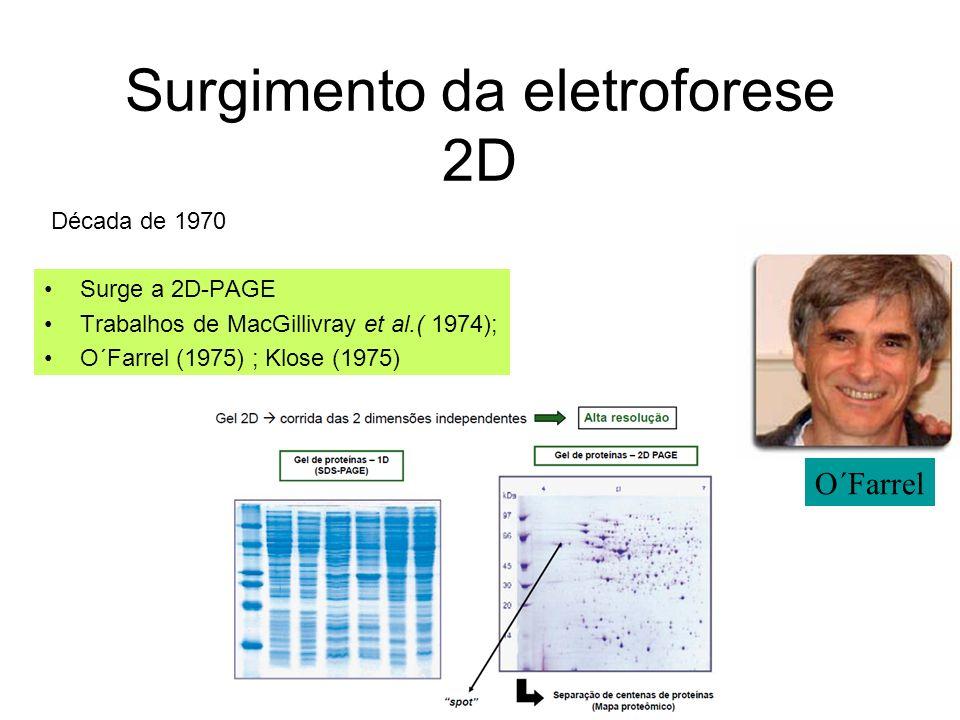 Aquisição dos dados: As Ômicas TRANSCRIPTÔMICA: -Differential Display (DD) - Serial Analysis of Gene Expression (SAGE) - DNA Microarray PROTEÔMICA: -Eletroforese bidimensional (2D) -MudPit -Espectrometria de massa Outras ômicas: Metabolômica, farmacogenômica, regulômica, peptidômica, degradômica…….