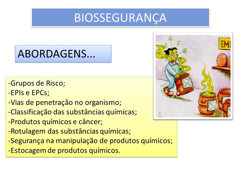 BIOSSEGURANÇA ABORDAGENS... -Grupos de Risco; -EPIs e EPCs; -Vias de penetração no organismo; -Classificação das substâncias químicas; -Produtos quími