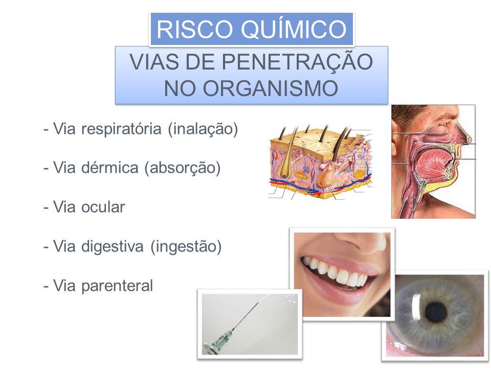 VIAS DE PENETRAÇÃO NO ORGANISMO - Via respiratória (inalação) - Via dérmica (absorção) - Via ocular - Via digestiva (ingestão) - Via parenteral RISCO