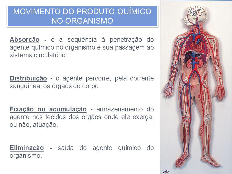 MOVIMENTO DO PRODUTO QUÍMICO NO ORGANISMO Absorção - é a seqüência à penetração do agente químico no organismo e sua passagem ao sistema circulatório.