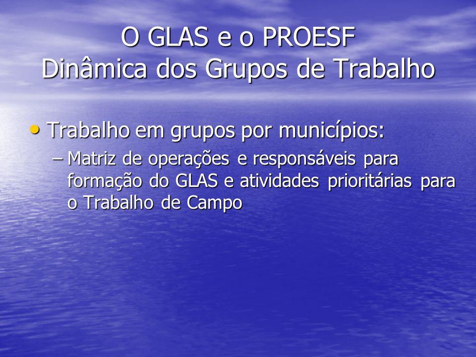 O GLAS e o PROESF Dinâmica dos Grupos de Trabalho Trabalho em grupos por municípios: Trabalho em grupos por municípios: –Matriz de operações e respons