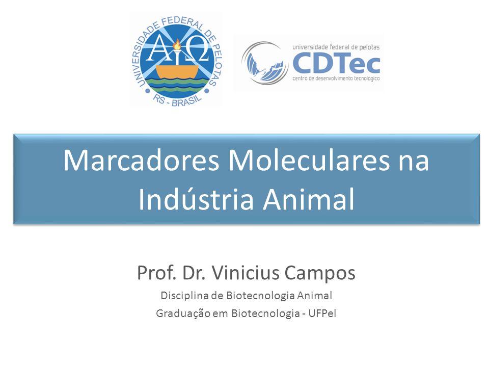 Marcadores Moleculares na Indústria Animal Prof. Dr. Vinicius Campos Disciplina de Biotecnologia Animal Graduação em Biotecnologia - UFPel