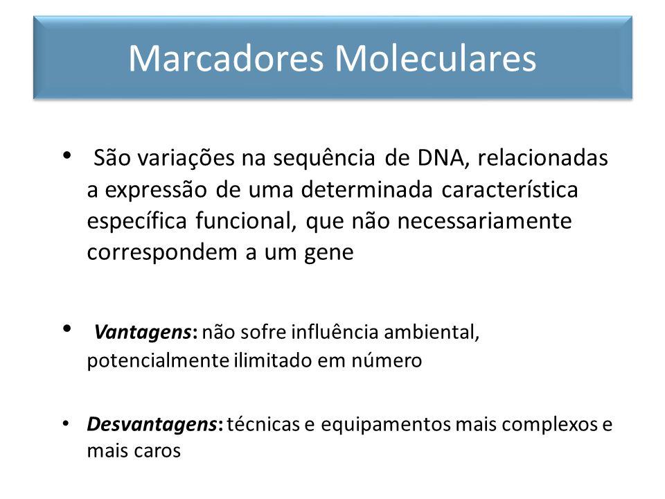 São variações na sequência de DNA, relacionadas a expressão de uma determinada característica específica funcional, que não necessariamente correspond
