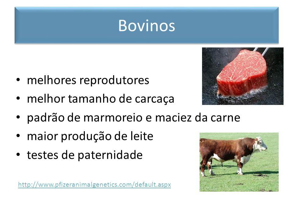 melhores reprodutores melhor tamanho de carcaça padrão de marmoreio e maciez da carne maior produção de leite testes de paternidade http://www.pfizera
