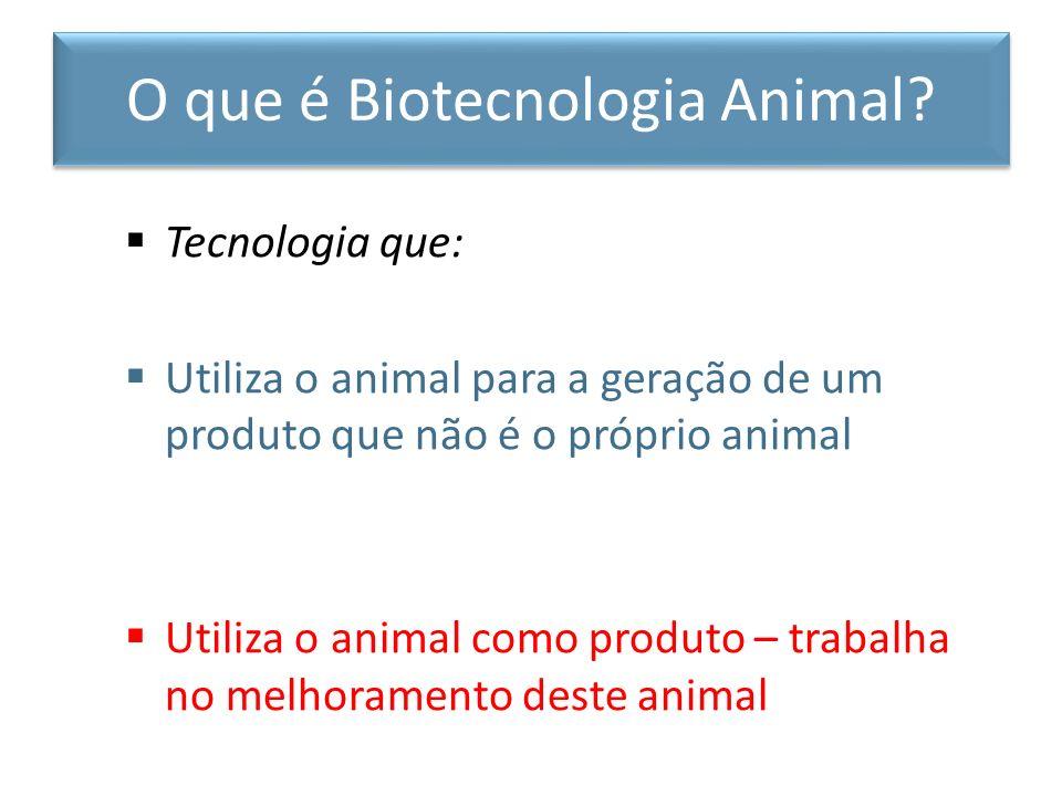 Tecnologia que: Utiliza o animal para a geração de um produto que não é o próprio animal Utiliza o animal como produto – trabalha no melhoramento dest