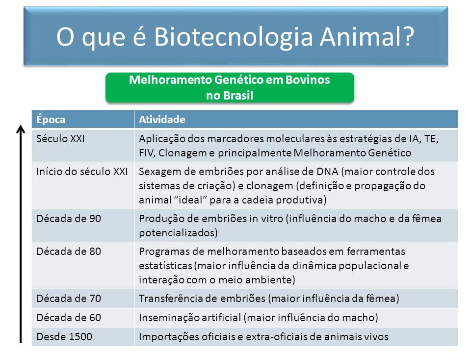 Conjunto de métodos e técnicas que visam o aumento da freqüência dos genes desejáveis ou das boas combinações genéticas em uma população ou a diminuição da freqüência dos genes indesejáveis ou das combinações genéticas ruins.