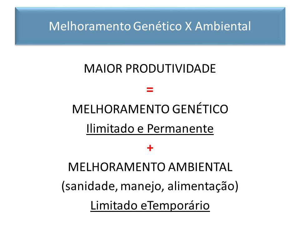 MAIOR PRODUTIVIDADE = MELHORAMENTO GENÉTICO Ilimitado e Permanente + MELHORAMENTO AMBIENTAL (sanidade, manejo, alimentação) Limitado eTemporário Melho