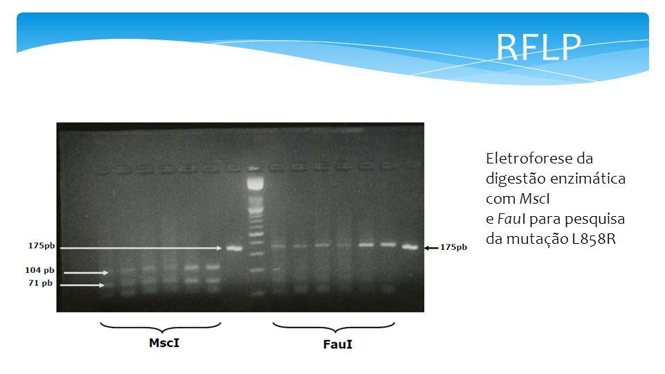 RFLP Eletroforese da digestão enzimática com MscI e FauI para pesquisa da mutação L858R
