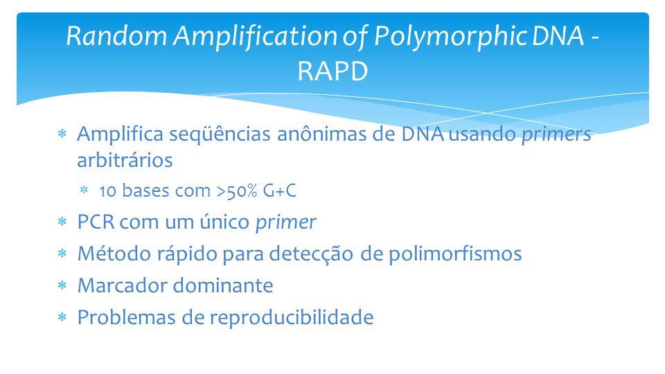 Random Amplification of Polymorphic DNA - RAPD Amplifica seqüências anônimas de DNA usando primers arbitrários 10 bases com >50% G+C PCR com um único primer Método rápido para detecção de polimorfismos Marcador dominante Problemas de reproducibilidade