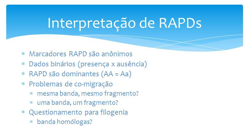 Interpretação de RAPDs Marcadores RAPD são anônimos Dados binários (presença x ausência) RAPD são dominantes (AA = Aa) Problemas de co-migração mesma banda, mesmo fragmento.
