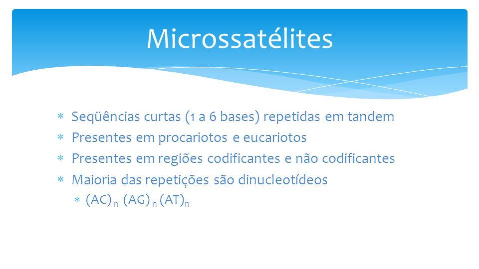 Microssatélites Seqüências curtas (1 a 6 bases) repetidas em tandem Presentes em procariotos e eucariotos Presentes em regiões codificantes e não codificantes Maioria das repetições são dinucleotídeos (AC) n (AG) n (AT) n