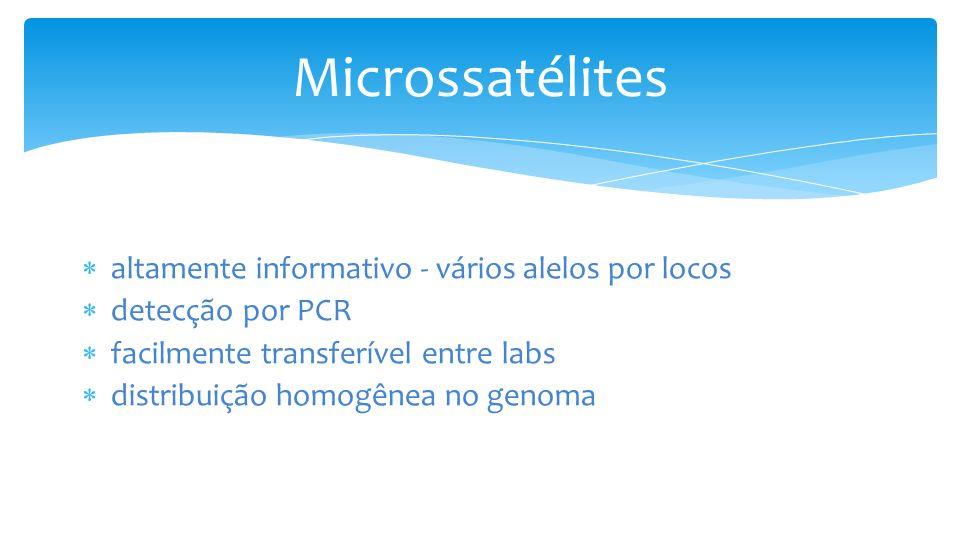 altamente informativo - vários alelos por locos detecção por PCR facilmente transferível entre labs distribuição homogênea no genoma