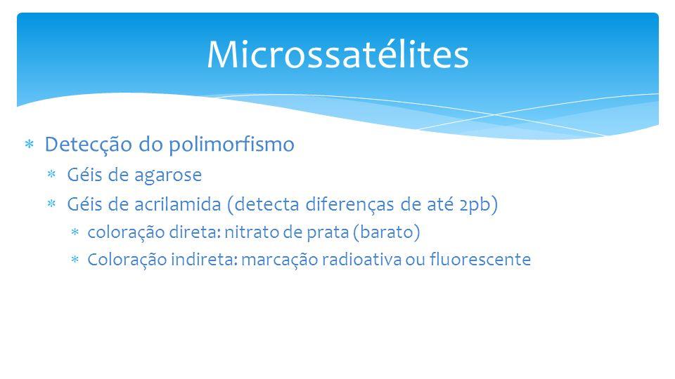 Detecção do polimorfismo Géis de agarose Géis de acrilamida (detecta diferenças de até 2pb) coloração direta: nitrato de prata (barato) Coloração indireta: marcação radioativa ou fluorescente Microssatélites