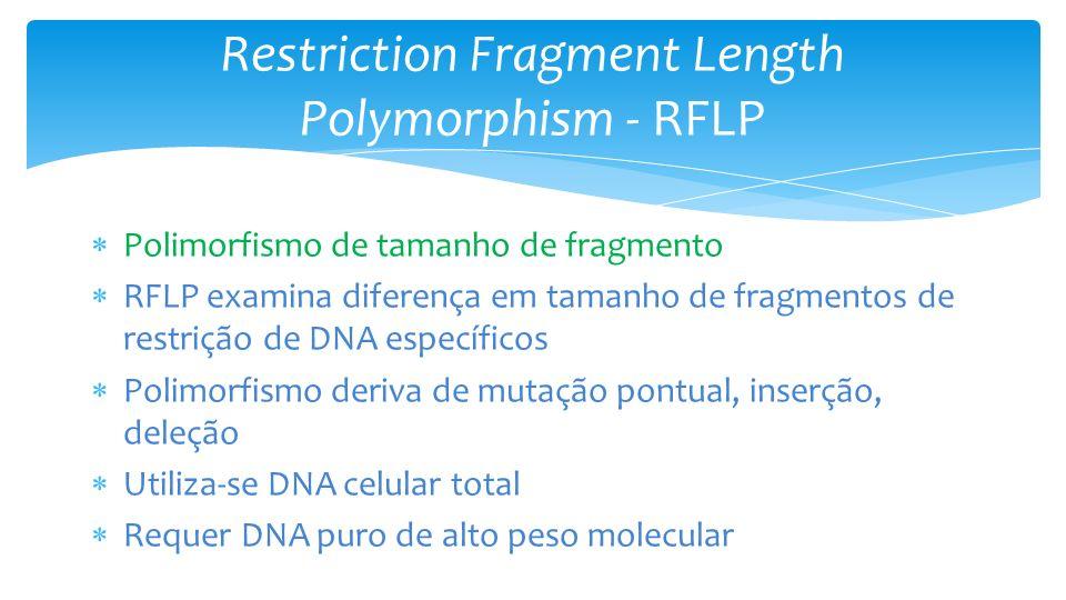 Restriction Fragment Length Polymorphism - RFLP Polimorfismo de tamanho de fragmento RFLP examina diferença em tamanho de fragmentos de restrição de DNA específicos Polimorfismo deriva de mutação pontual, inserção, deleção Utiliza-se DNA celular total Requer DNA puro de alto peso molecular
