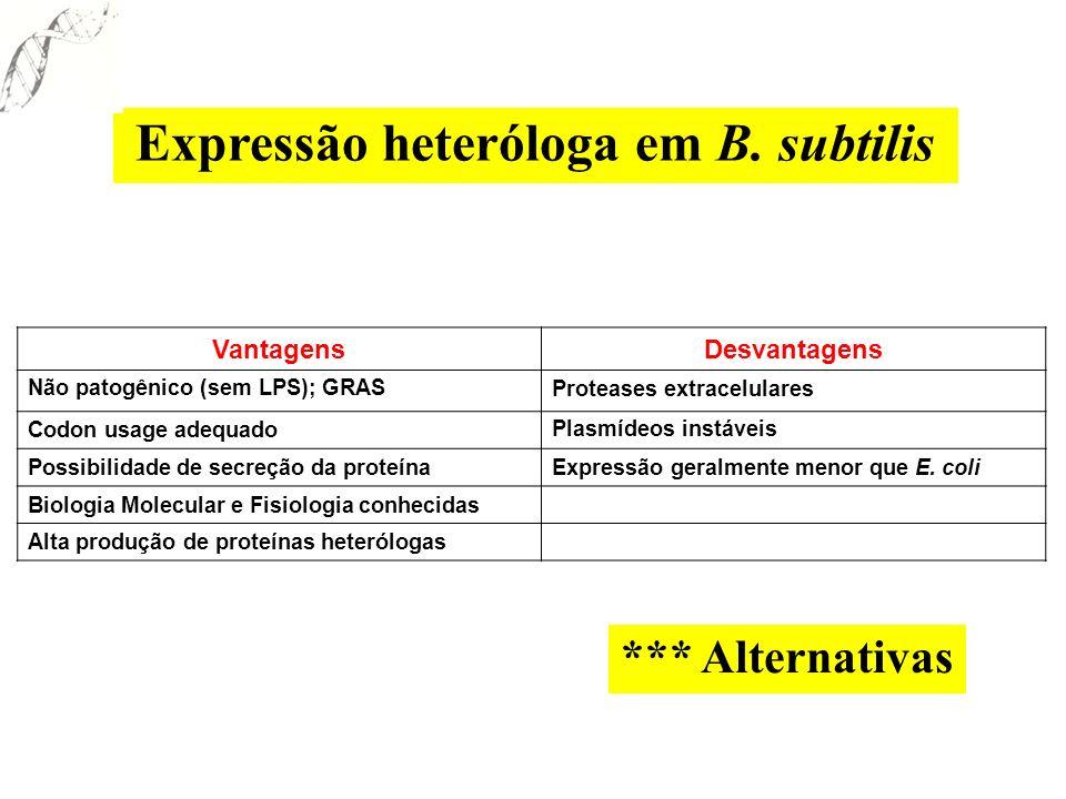 VantagensDesvantagens Não patogênico (sem LPS); GRASProteases extracelulares Codon usage adequadoPlasmídeos instáveis Possibilidade de secreção da pro