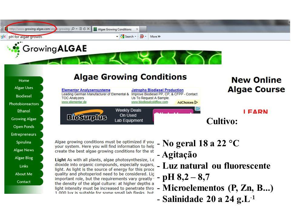 Cultivo: - No geral 18 a 22 C - Agitação - Luz natural ou fluorescente - pH 8,2 – 8,7 - Microelementos (P, Zn, B...) - Salinidade 20 a 24 g.L -1