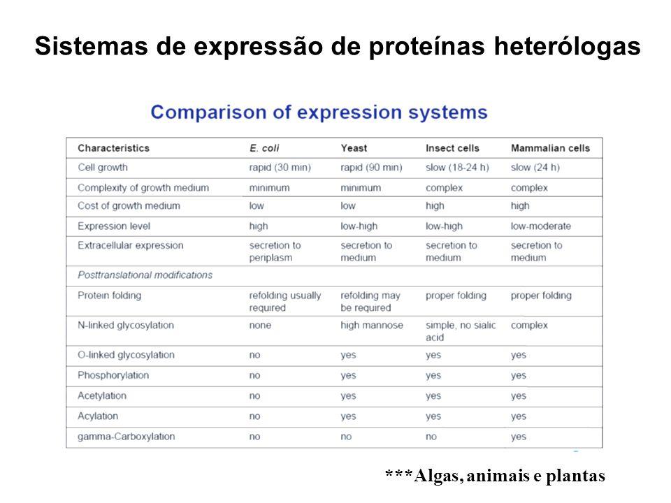Sistemas de expressão de proteínas heterólogas ***Algas, animais e plantas