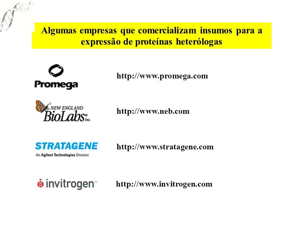 Algumas empresas que comercializam insumos para a expressão de proteínas heterólogas http://www.promega.com http://www.neb.com http://www.stratagene.c